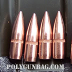 .223 62 grain lead core tips