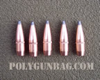 .308 165 grain soft poit tips